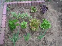 gardening_ob01_02.jpg