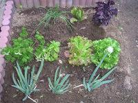 gardening_ob01_03.jpg