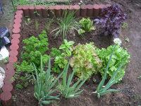 gardening_ob01_04.jpg
